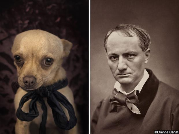 Dogs that resemble your favorite poets and authors. Happy Wednesday! http://t.co/ZfjrdRyHHk http://t.co/QlwcwNC0ON