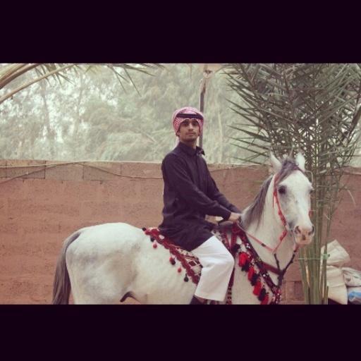 #الحصان_براق #من #مربط_العليا #تصوير #الاخ #طارق_الهذيل  #في_فريق #فرسان_الجوف http://t.co/YAlYyYPUbD