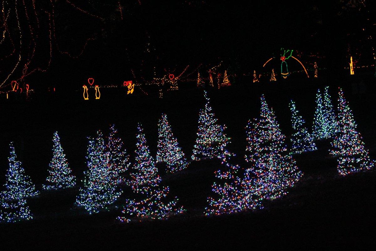 Tilles Park Christmas Lights.Tillespark Hashtag On Twitter