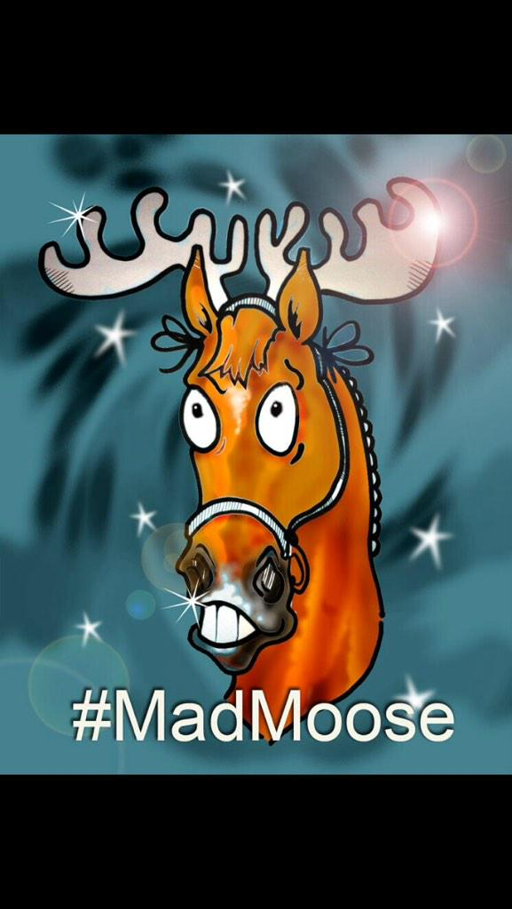 We will see tomorrow if Mad Moose is going to be on the Naughty Or Nice list!!!! http://t.co/wy1tl3xklV