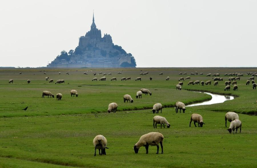 #Popular on #500px : Mont Saint Michel. by e-west Big Version Here: http://t.co/5vygONC3Ic http://t.co/pkQoijp4EB