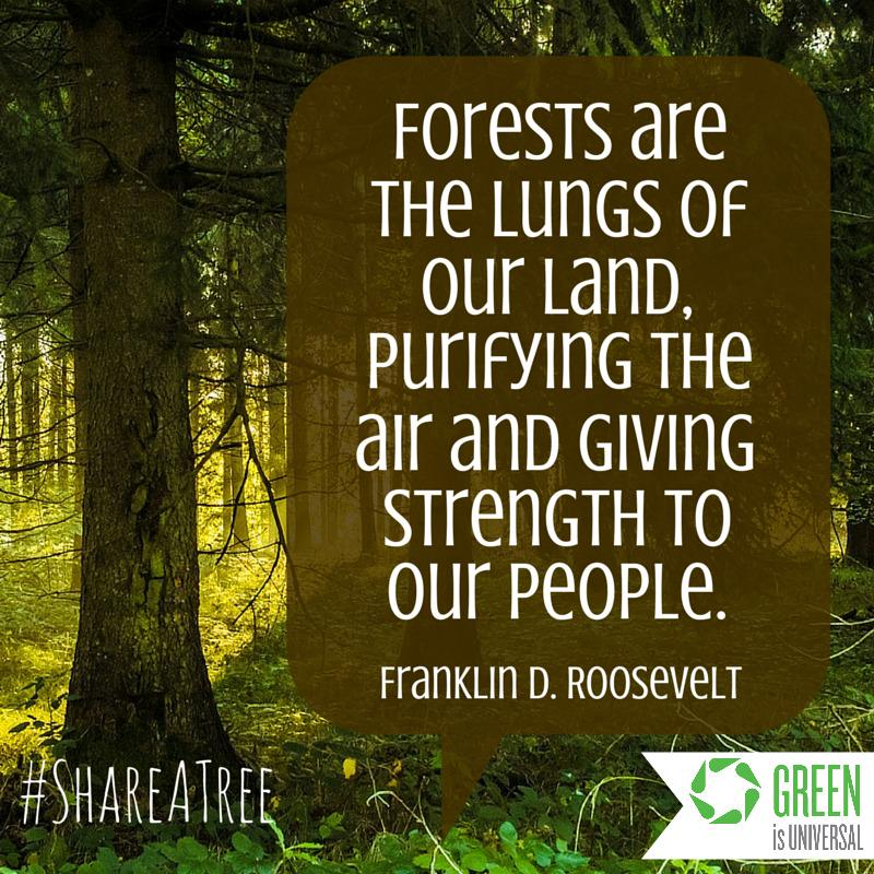 PLS RT @ArborDay will plant real trees if you #ShareATree! Every 25k, we donate $5k! http://t.co/LszCCdSBpJ http://t.co/Z8ga4lKHUs