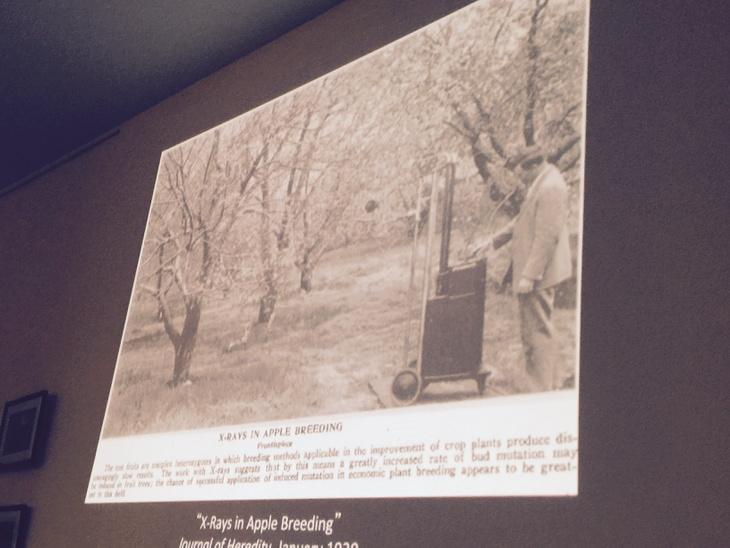 X-Ray experiment in the 30's on apples for creating new breeds! #whatcandiybiodo @lapaillasse http://t.co/UgkJR51wbN