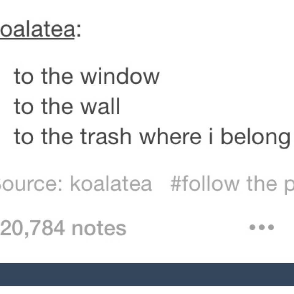 Pretty Trash Can Tumblr