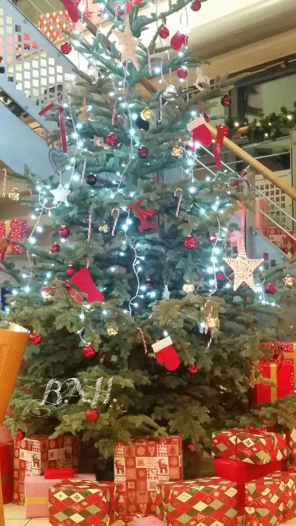 Weihnachtsbaume bad essen
