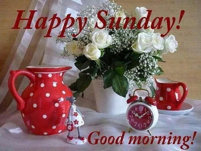 Meps On Twitter Good Morning Happy Sunday Everyone Happy