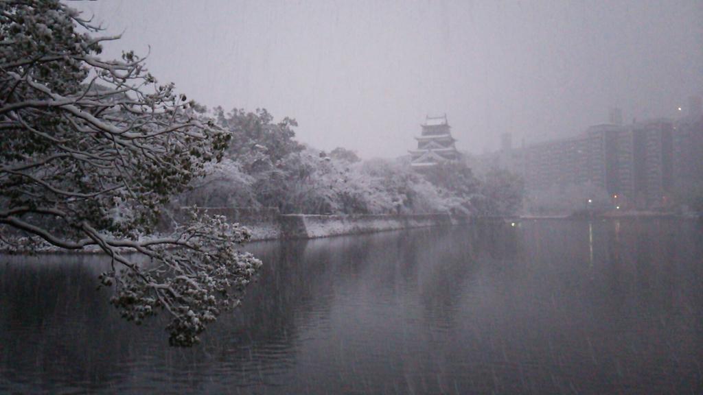 雪の広島城。 pic.twitter.com/MkS9QGC6zB