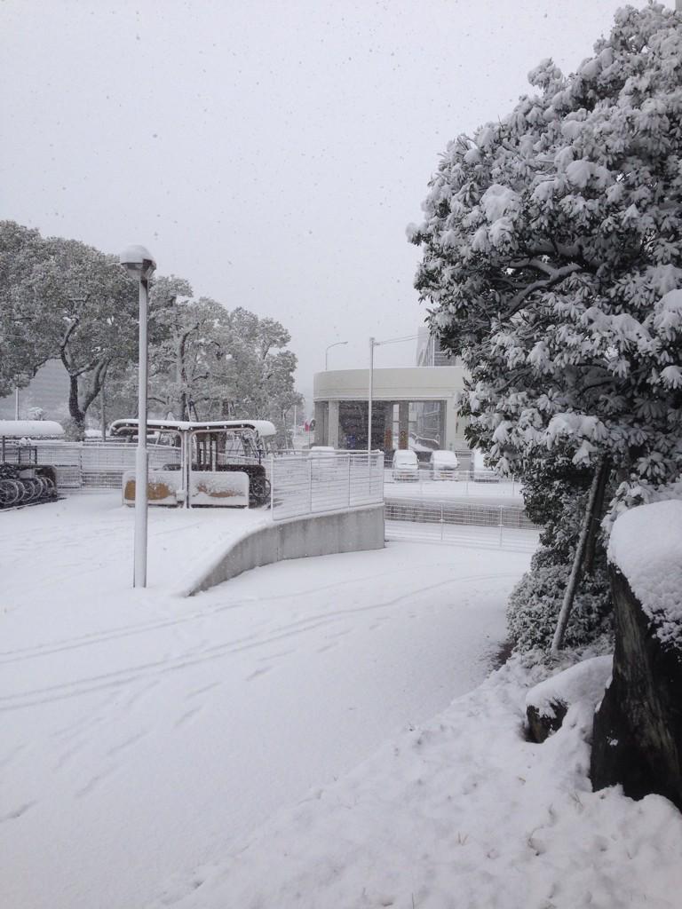 広島の雪やばい。。いつも10分弱の道のり、30分かかった。でも雪降ると、雪国生まれでよかったと思う!ちゃんと対応できる(笑)でもさすがに、普通タイヤでの運転は怖い。。周りもほとんどノーマルタイヤだからなおさらだ。 pic.twitter.com/kpdxxNTIVC