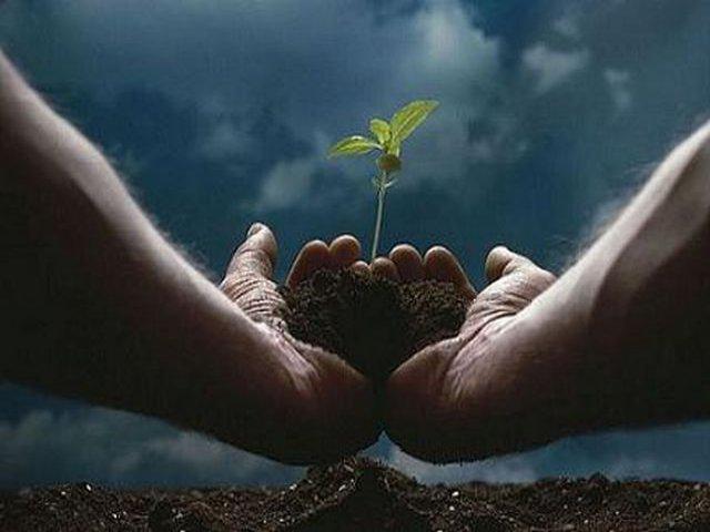 Ambiente CO2: allarme emissioni di anidride carbonica