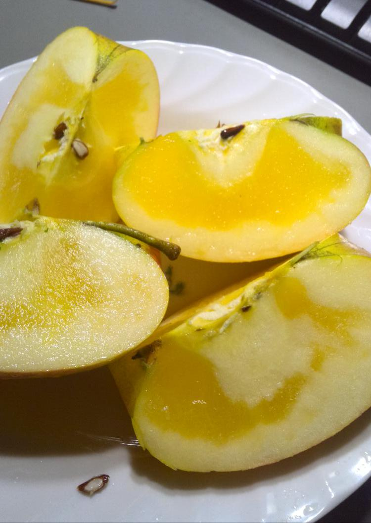 今日のデザートは先週に収穫したばかりの林檎です♪これが福島県会津産の林檎です♪甘~く♪シャリシャリの触感です♪会津はまさに農産物の宝庫! pic.twitter.com/ApnOiTsDMs