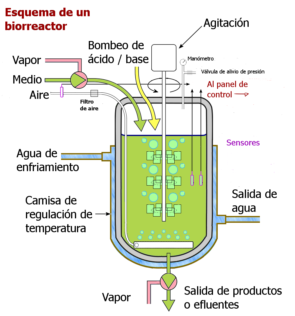 Esquema de un fermentador o biorreactor para el crecimiento de grandes cantidades de microorganismos #microMOOC http://t.co/gYrDjrM8zG