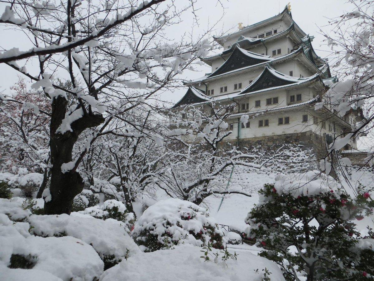 名古屋城が真っ白な雪に包まれました。 pic.twitter.com/cENZylVWtT