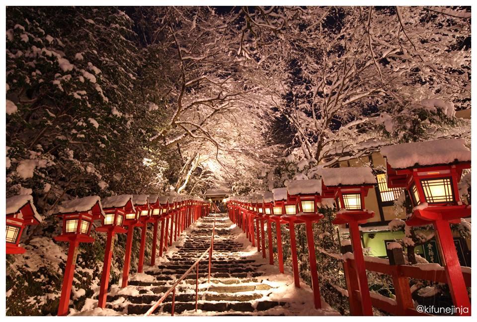 貴船神社「夜の雪見特別参拝・積雪日限定ライトアップ」。。。素敵すぎる  http://t.co/YAutXvfiRo http://t.co/vf8pvbDD6z