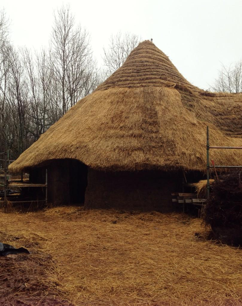 Had a celebration of the hard work done so far at #BrynEryr by lightning 1st fire and eating some Iron Age food http://t.co/kY3N3o9eRQ