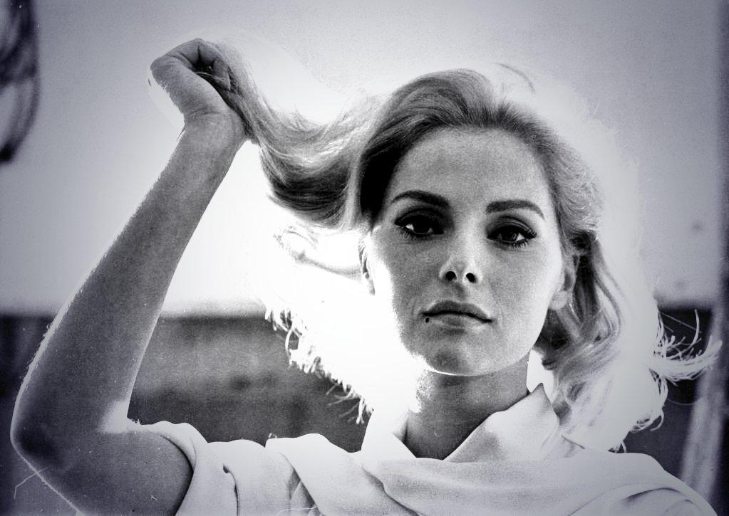 Virna Lisi Foto bellezza in bianco nero