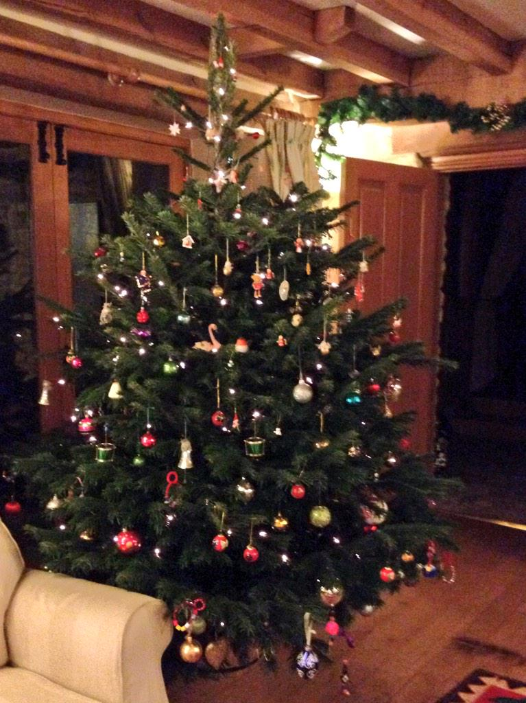 RT @emmamightyhappy: Dog may have weed on it but I just love our tree, Grandma's ancient vintage ornaments looking great @KirstieMAllsopp h…