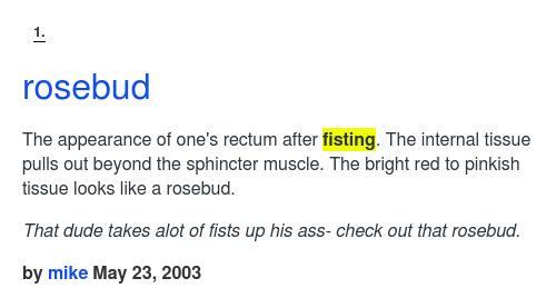 Definition Rosebud Fisting