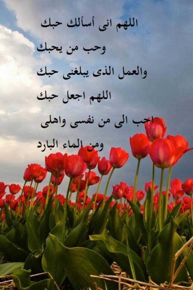 نسمات الصباح Ataiesh Twitter