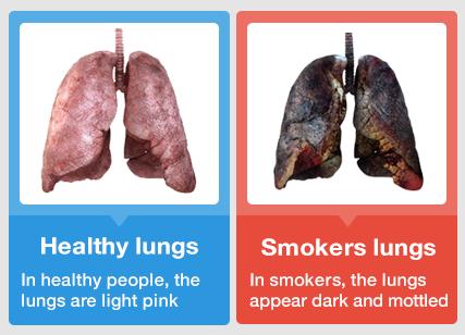 Why do people smoke? | NeoGAF