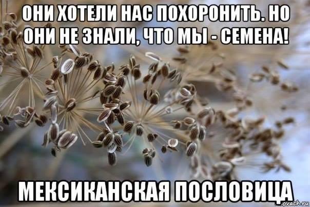 За минувшие сутки двое украинских военных получили ранения, - спикер АТО - Цензор.НЕТ 5013