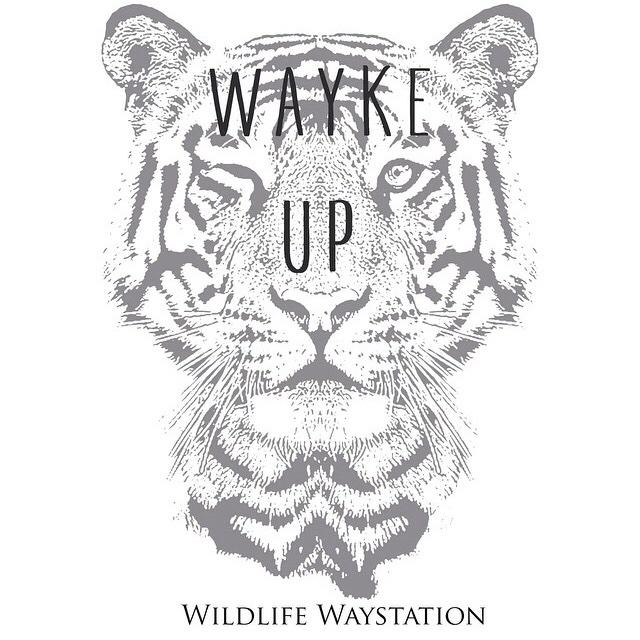The #WildlifeWaystation needs our help. Please RT & help spread the word http://t.co/IpJPOY8BeI #waykeup @WWaystation http://t.co/IFaAtjFGQK