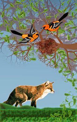 Resultado de imagen para Las zorras tienen guaridas, y las aves del cielo nidos;