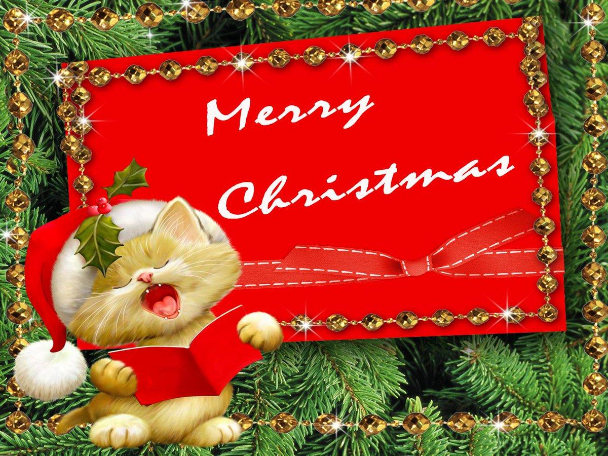 Wünsch Euch Allen Frohe Weihnachten.Reni On Twitter Guten Morgen Wünsche Euch Allen Frohe