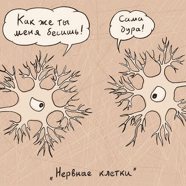 Нервные клетки не восстанавливаются картинки прикольные