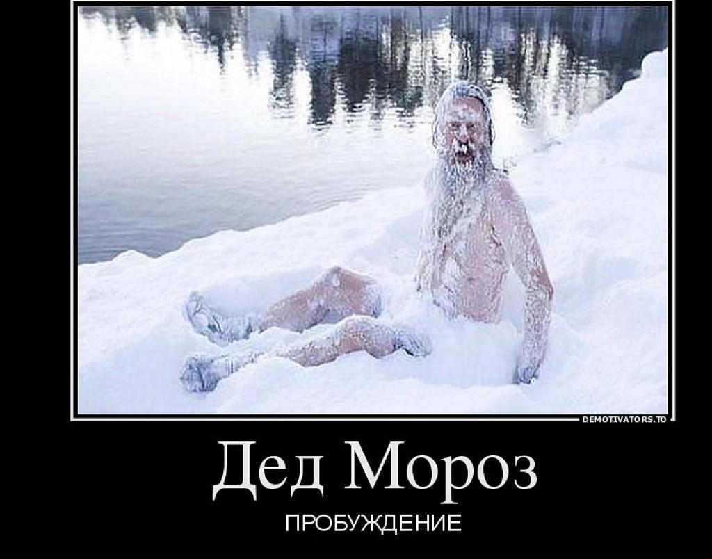 Прикольных картинок, прикольные картинке про мороз