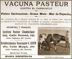 #Pasteur desarrolló las primeras vacunas atenuadas contra el cólera de las aves y  el ántrax (carbunco) del ganado http://t.co/OJGq41qqnK