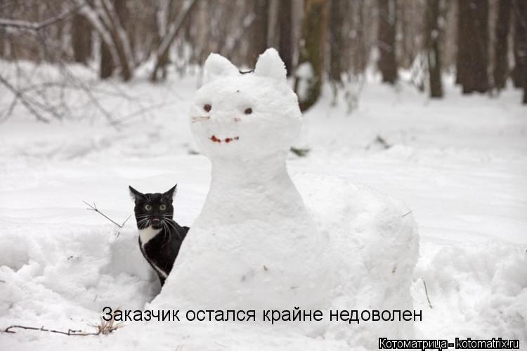 Фотосессия на коне зимой идеале