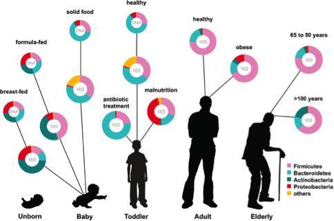 Tus microbios no son siempre los mismos: cambian con la edad, la dieta, el estado de salud #microMOOC http://t.co/RJJ8E8svPb