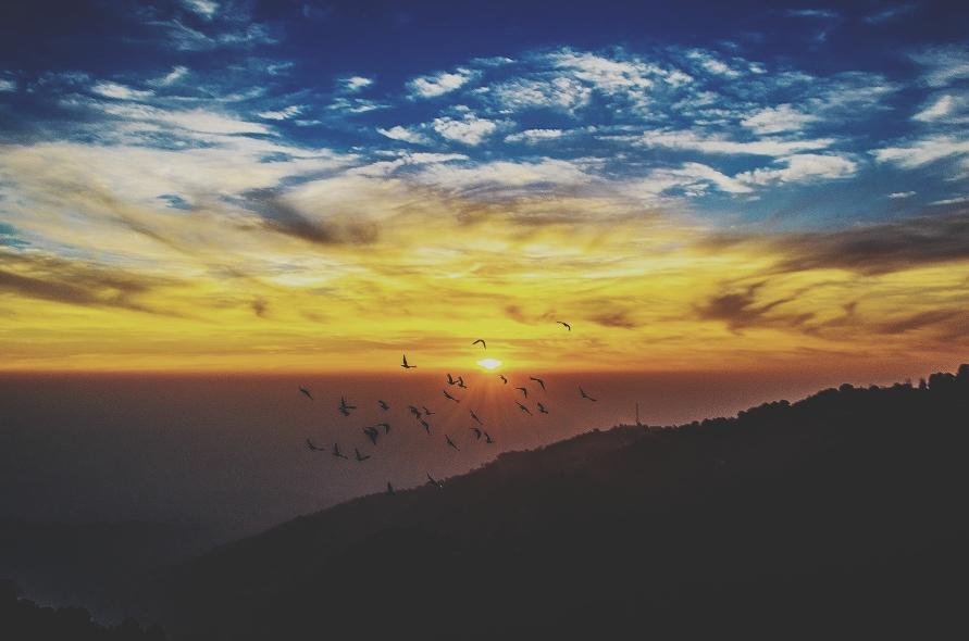 The most perfect Mcleodganj sunset. #travel #ttot #lonelyplanetindia http://t.co/8aDmduYtUS