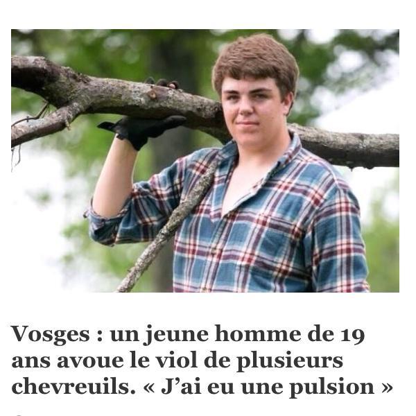 pendant ce temps dans les Vosges...