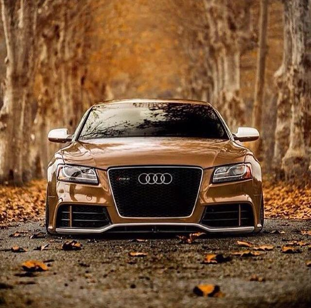"""Tuned Audi Rs5: EpicDubs On Twitter: """"#MondayMotivation #Audi #Rs5 #Stance"""