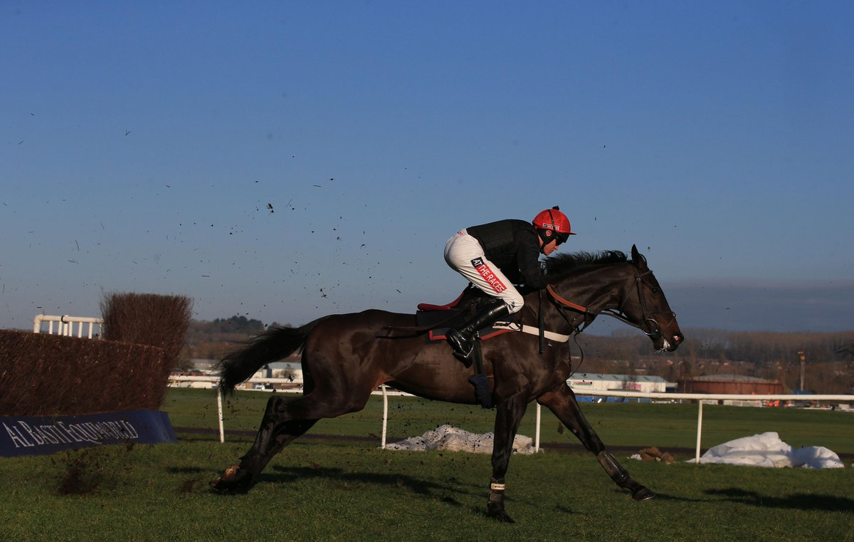 0b993119dfcd3 Former champion chaser Sprinter Sacre is set to return from a year out at  Ascot next