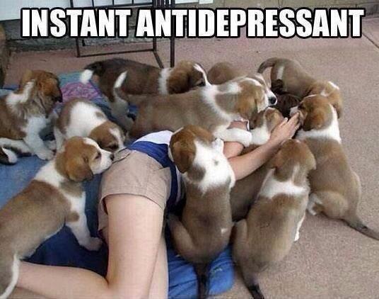 """""""@anitatekampe: Antidepressant!"""