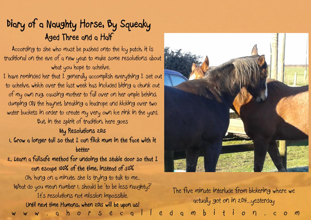 Happy New Year Horse Images 83