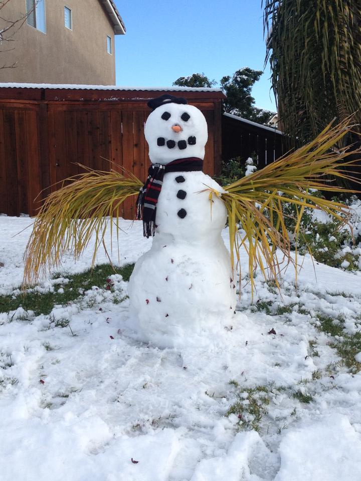 Only a California snowman has PALM fronds for arms! (Viewer Brian Asp submitted this from Murrieta.) #NBC7 #SanDiego http://t.co/F7tFoak3fw