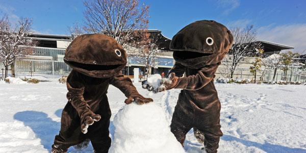おはようございます!梅小路公園は雪で一面真っ白です。新年のご挨拶に来てくれているオオさんショウさんも朝から雪遊びをしていました!本日の開館時間は10:00、最終入館時間は19:00です。 皆さまのご来館、心よりお待ちしております!