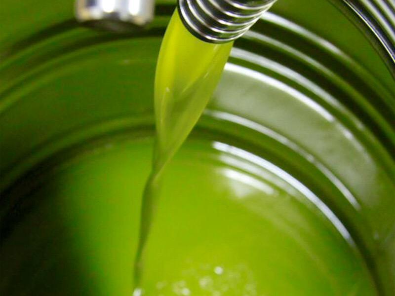 E' crisi per l'olio di oliva italiano
