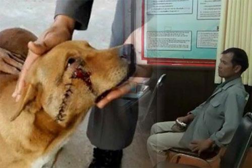 หนุ่มใหญ่เดือดขว้างมีดใส่สุนัข ประเดิมพรบ.ทารุณสัตว์คนแรก http://t.co/a9mIkotQfT http://t.co/uccFhENPbg