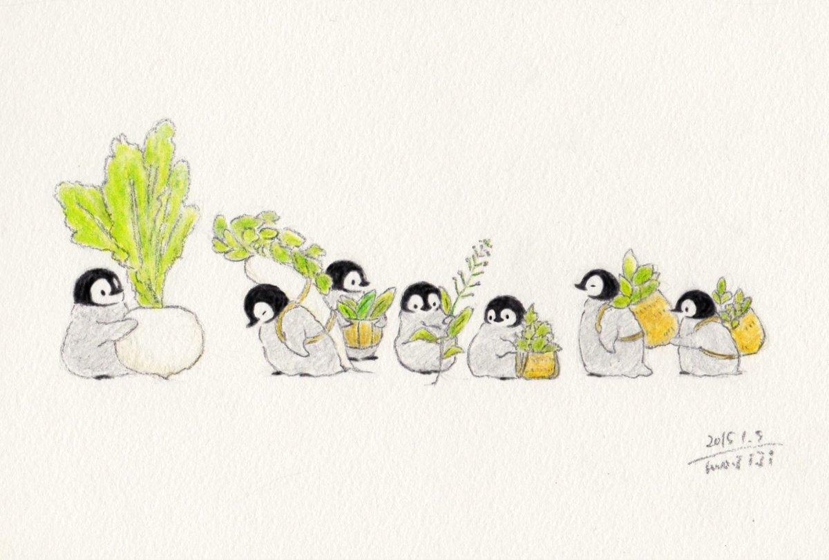 Namahagen On Twitter At Mojimojiji おはようございますペンギンの