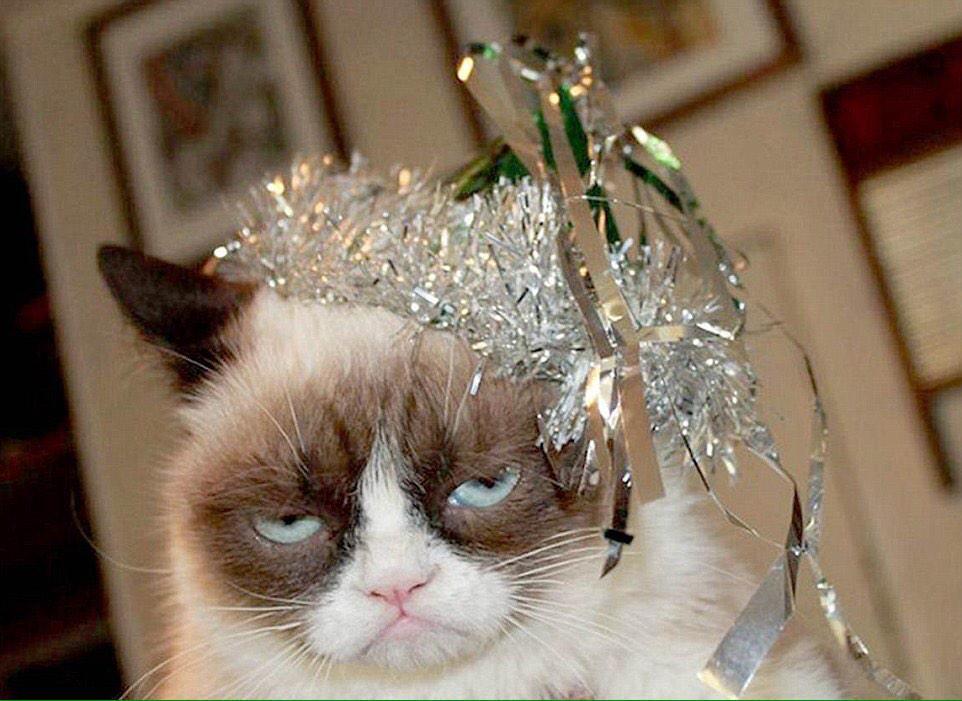 Открытки, картинки новогоднее настроение прикольные