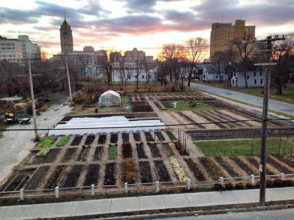 """Down by 1%. Go vote. """"@MIUrbanFarm: Click #DETROIT to a Win! http://t.co/ywMq52BjQP http://t.co/GfEhsdHAAy"""" #backchannel"""