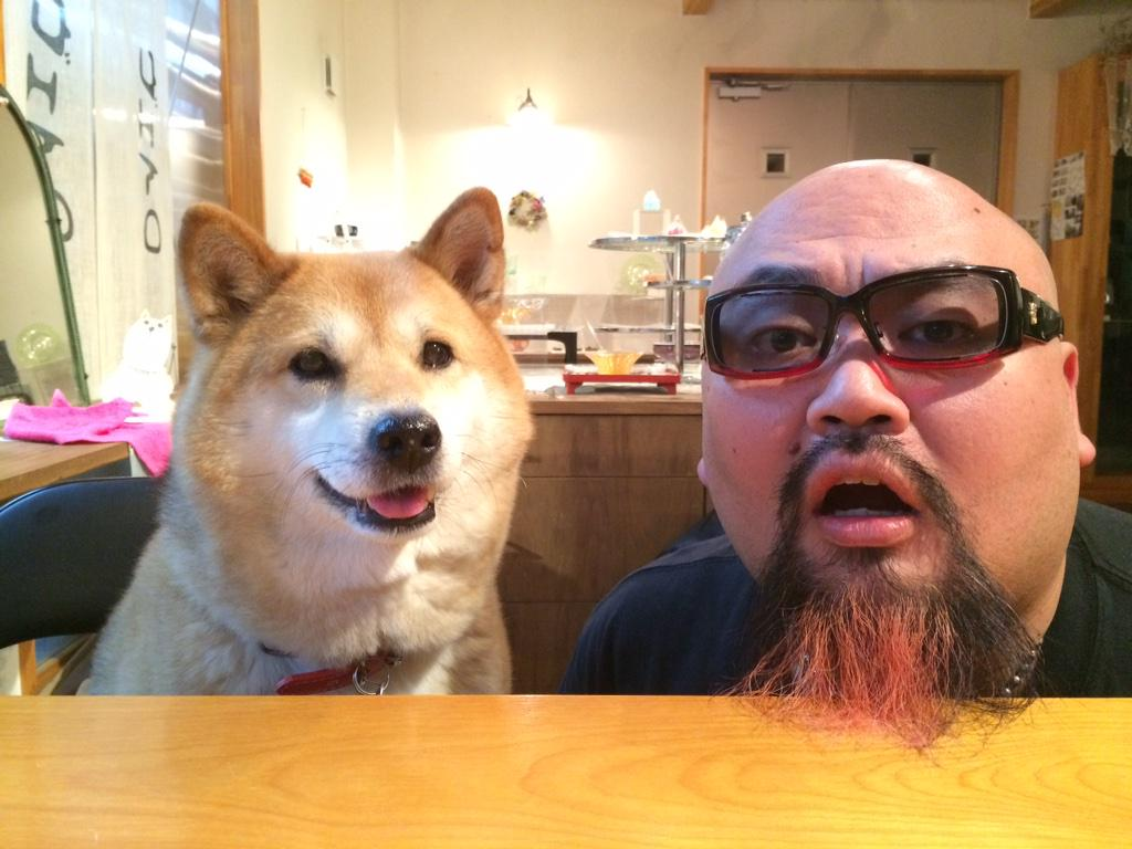 NAVER まとめ【柴犬?】「いとしのムーコ」の可愛いお写真集【秋田犬?】