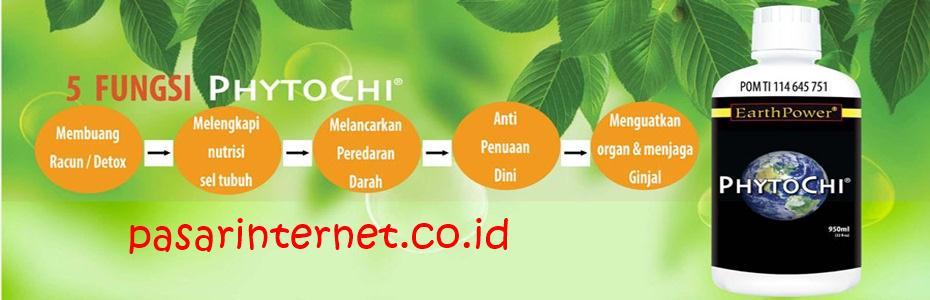 Fungsi Phytochi