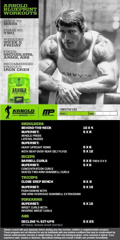 Musclepharm on twitter mp workout of the day its arnold mp workout of the day its arnold blueprint to mass week shouldersarmsabs by arnold powered by ironcre3picitterfhm0yznob8 malvernweather Choice Image
