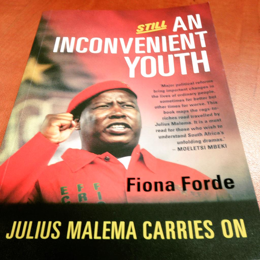 an inconvenient youth forde fiona