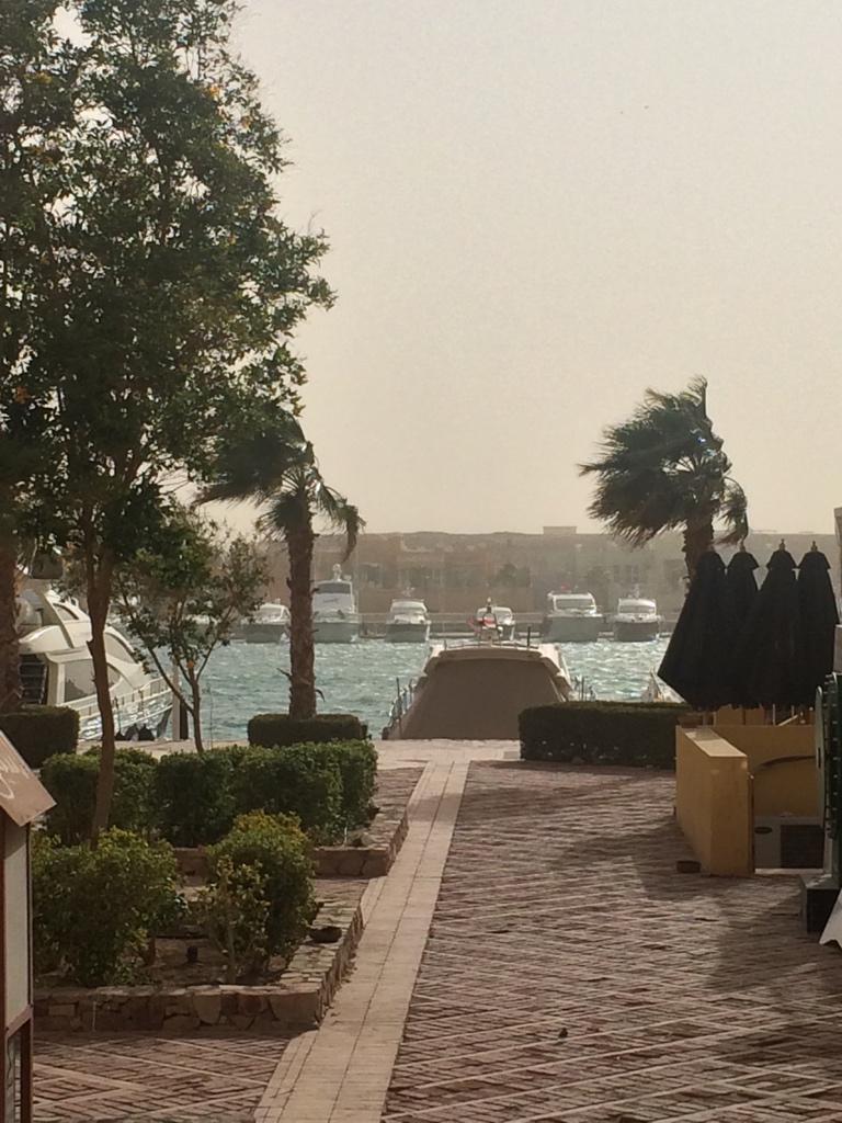 عاصفة ترابية لعينة في الجونة! اول مرة اشوف موج جوه المارينا!! http://t.co/HzlitBfQ4F